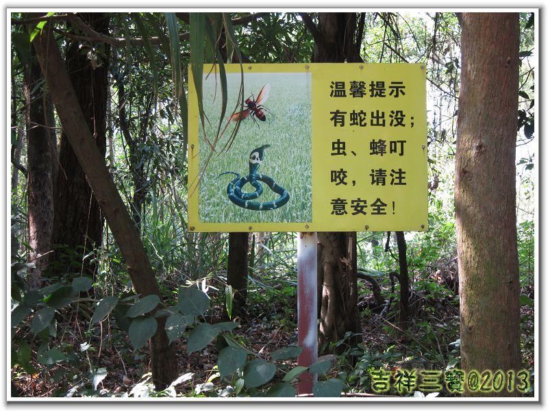 2013-10-25 塘朗梅林 18.jpg